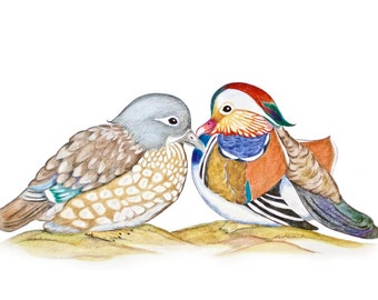 Feng Shui Symbol of Love & Loyalty Mandarin Duck Couple, Comes with Certificate of Authenticity, Feng Shui Bird for Love Attraction