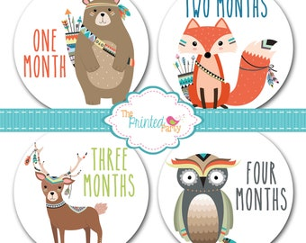 Monthly Baby Stickers - Baby Shower Gift and Photo Prop - Boy - Tribal - woodland - aztec - 308