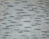"Birch Bark 16"" x 16"" for furniture or crafts (one sheet)"
