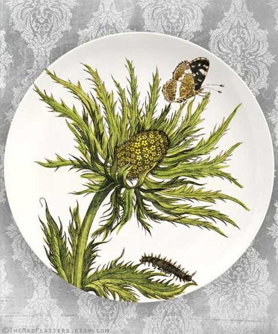 1600's botanical artwork VIII melamine plate