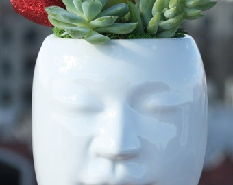 Blissful Thoughts - Cool and Refreshing Collection of Echeveria, Kalanchoe, Crassula and Sedum Plants in Modern Head Planter