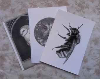 Pack of 3 postcards of artwork by Louise Lily King