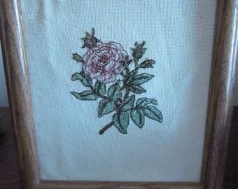 Single Rose Sampler