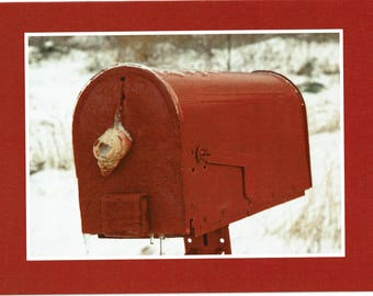 Mailbox in ice - photo card