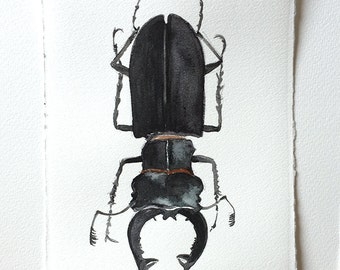 Stag Beetle painting, Watercolor painting original, Beetle illustration, Bugs Insects painting, Insect wall art, Beetle watercolour art work
