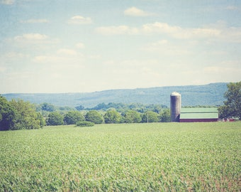 Farm photography, farmhouse decor, rustic wall art, barn photography, tennessee, large wall art, farm decor, country home, rustic decor