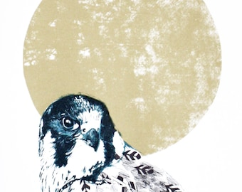 Bird of prey screen print - hand printed peregrine falcon close up - 35 x 50cm - unframed limited edition print
