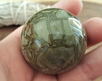 Kambaba Jasper (Kambaba Stone, Crocodile Jasper) ~ one 40mm Reiki infused polished crystal ball (CB19)