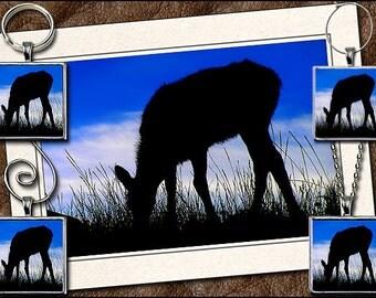 Elk Photo Note Card Set - Elk Pendant, Elk Keyring, Elk Ornament, Elk Wine Charm - Wildlife Greeting Card Handmade (GP44)