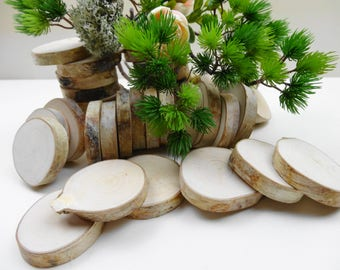 "2""-2.5"" Wood Slices,Birch Tree Slices, Rustic Wedding Decor,DIY, Woodworking,Birch Tree Slices, Birch Wood, Crafts Wood, (E37) Set of 15"