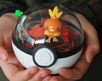 Torchic Pokemon Pokeball Terrarium Fire type