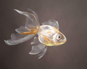 "Goldfish original watercolor painting, 8 X 11.5""  A4"