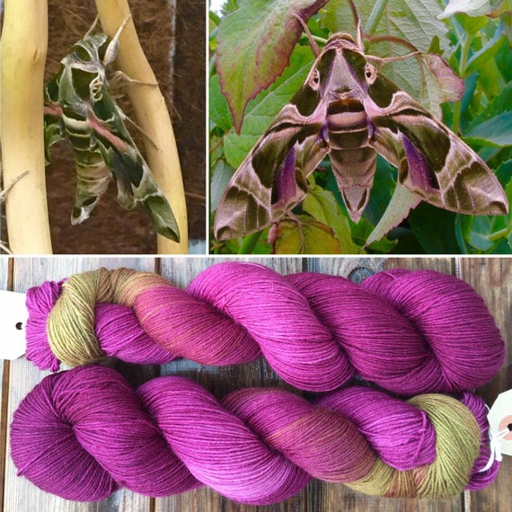Oleander Hawk Moth, bluefaced leicester indie dyed sock yarn in dusky pink and olive