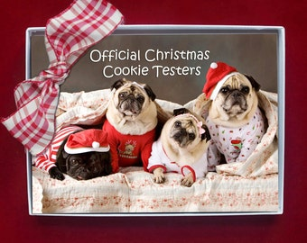 BOXED CHRISTMAS CARDS - pug christmas cards - 5x7 - Official Christmas Cookie Testers