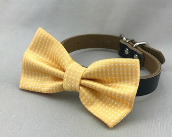 Yellow Dots Bowtie for Wedding Dog Outfit Pet Wedding Light Yellow Gold Bow Tie Black Dog Collar