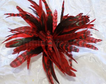 "50+ Red 6-8"" CHINCHILLA COQUE rooster Feathers, fly tying, Cynthia's Feathers SKU 7D11"