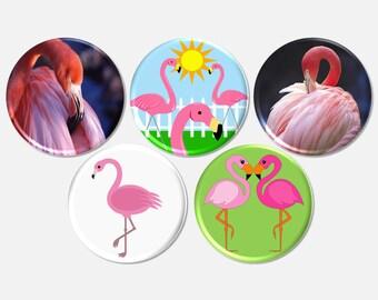 5 Pink Flamingo Button, Flamingo Pinbacks, Flamingo Party Favors, Bird Magnets, Flamingo Magnets, Tropical Birds Buttons - BB2013
