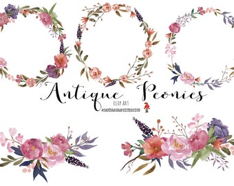 """Floral clip art: """"ANTIQUE PEONY clip art""""  hand painted watercolor clip art, digital flowers, peony flowers 31 PNG  files (5259)"""