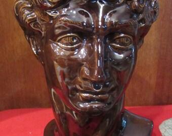 Michelangelo's David's head bust