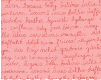 OLIVE'S FLOWER MARKET by Lella Boutique - pink words yardage