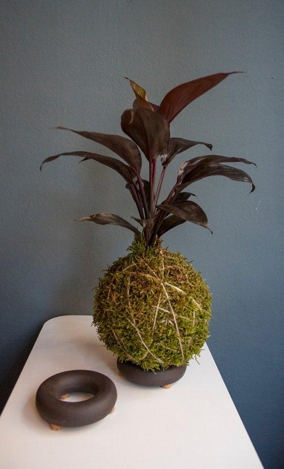 gr s kokedama support support de plante dair plante panier. Black Bedroom Furniture Sets. Home Design Ideas