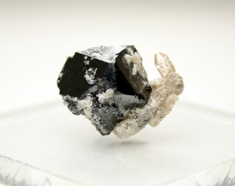 Stunning Bixbyite and Topaz Crystal Cluster