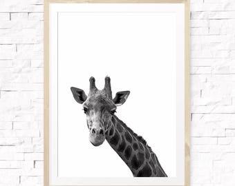 Giraffe print, Safari nursery print, Nursery decor, Nursery animal art, Animal printable, Giraffe wall decor, Kids room, Modern minimalist