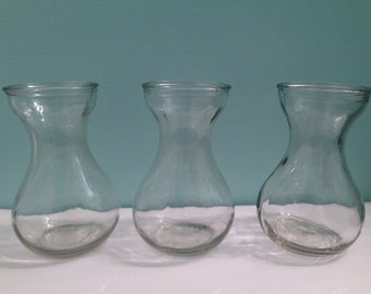 Clear Glass Bulb FORCING VASES for Hyacinth Bulbs 3 Vases!