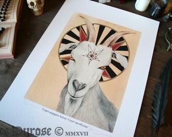 Satanic Goat: Blood Sacrifice (Capra aegagrus hircus; Cruor sacrificium) Fine Art Print. Sabattic, Occult, Evil, Goat, Baphomet, Mendes.