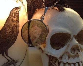 Who's That Owl? transparent Glass Locket Necklace. Original Transparent Photography. Unique.