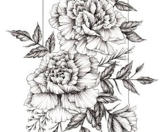 Carnation Flower Ink Drawing - A4 and A5 Prints
