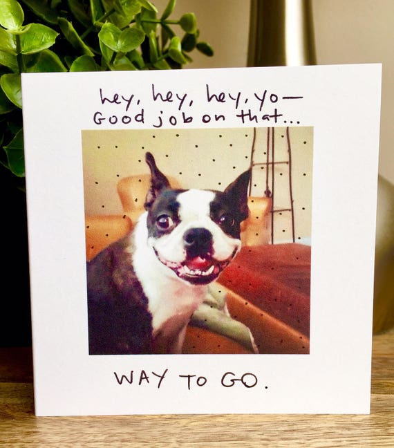 Good job card, boston terrier card, way to go card, dog way to go card, good job from the dog, congrats card, hey good job