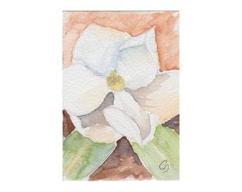 Magnolia II - Watercolor ACEO Original