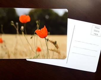 Red Poppies, Fine Art Photography Postcard, Archival Paper, French Summer, French Landscape, Grain Field, Father's Day Card, Greeting Card