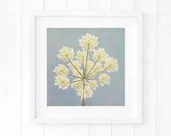 Wild flowers decor, blue botanical decor, Floral artwork print, Blue flower artwork, Cow Parsley print botanical artwork nature inspired art