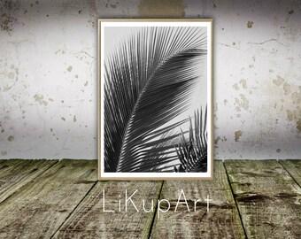 Tropical Leaf Print, Palm Tree Print, Coconut Leafs Print, Palm Tree Art, Coconut Wall Art, Black and White Tropical Art Palm Tree Printable
