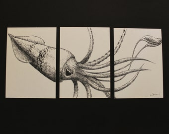 Squid illustration, ink art drawing, marin life ink art, black and white animal ink art