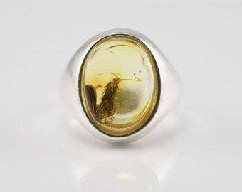 Baltic Amber 2 MOTHS Fossil Inclusions Sterling Silver Handmade Jewelry Ring Size- 6.5