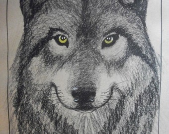 Wolf drawing, timber wolf, charcoal, original art, nature art, wolf art, charcoal drawing, charcoal sketch, wolf sketch, print