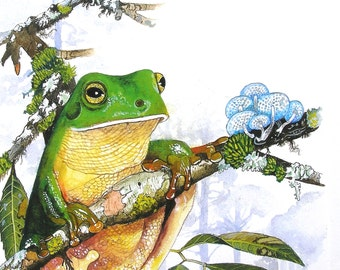 Greeting Card - Green Tree Frog - Front view on mossy branch