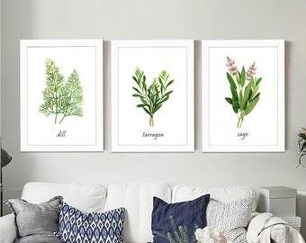 Set of 3 Herb watercolor painting prints. Dill, Tarragon, Sage paintings, Herb botanical prints, green home decor art print, kitchen decor