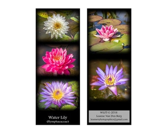 Printed Bookmark, Flower, Water Lily, Nature,