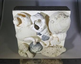3D Seashell Collage Box - Slate Depths