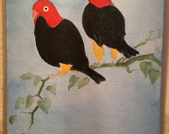 Black and Red Birds