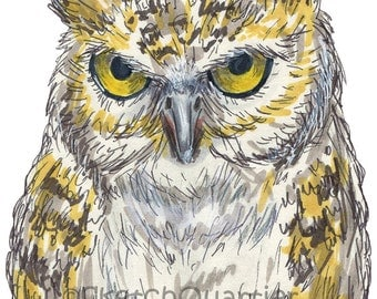 Hand-drawn owl digital clipart with transparent background for instant digital download.
