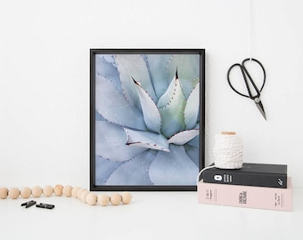 Succulent Photo Print, Pale Blue Green Cactus, Garden Greenery Minimal Printable Design
