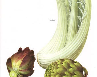 Set of 2 Vintage Vegetable Prints Artichokes 1970s Illustrated Color Plates Book Pages