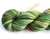 Polliwog--hand dyed sock yarn, 2ply merino and nylon, (400yds/100gm)