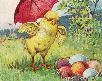 Original Vintage Embossed Easter Postcard Chick Umbrella & Colored Eggs 1903