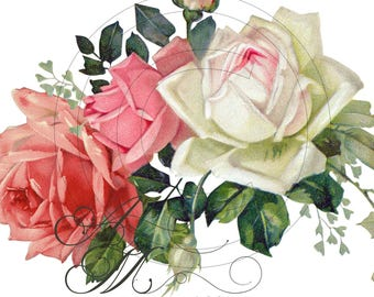 Beautiful Vintage Chic Shabby Pale Painted Pink White Roses Spray Waterslide Water Slide Iron On Transfer Miniature Craft Decals ro-223